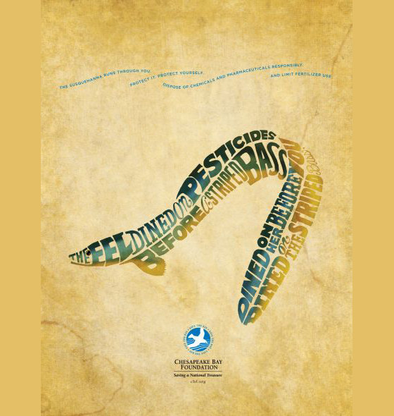 Chesapeake Bay Foundation: Eel CBF